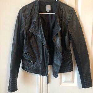 Nordstrom Halogen Leather Moto Jacket